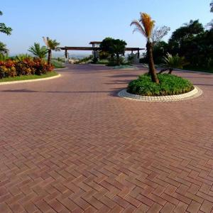 Image result for paving examples south africa